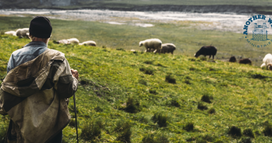 Psalm 23 scripture study: week 1 - The Lord is my shepherd; I shall not want.